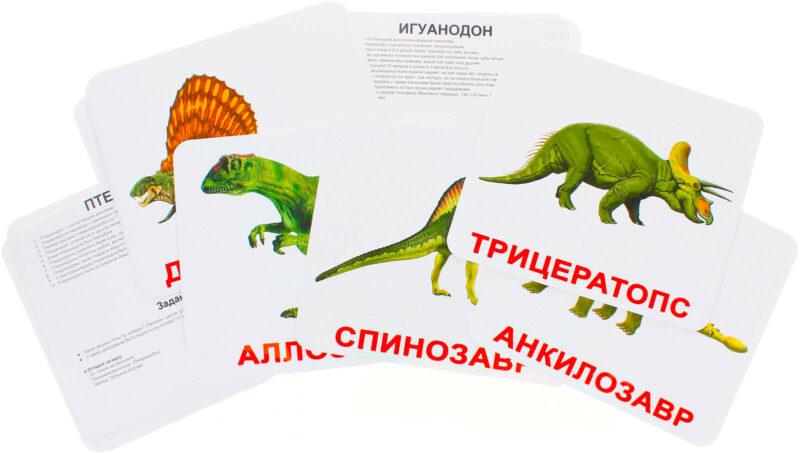 """Купить Подарочный набор карточек Домана """"Динозавры"""" большие с фактами,ламинированные.Раннее развитие по методике Глена Домана"""
