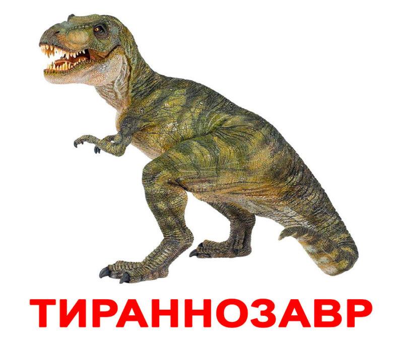 """Ламинированные карточки Домана """"Динозавры"""" на рус."""