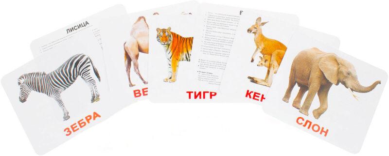 Карточки Домана Домашние Животные