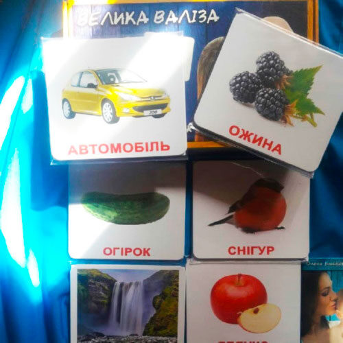 """Подарунковий набір 420 ламінованих карток Домана """"Велика Валіза -Вундеркінд с пелюшок"""" українською photo review"""