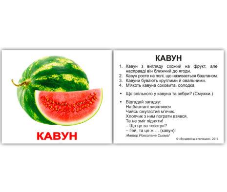 """Міні-картки Домана """"Фрукти"""" з фактами українською"""