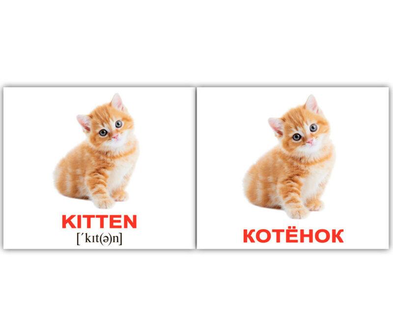 "Мини-карточки Домана ""Domestic animals/Домашние животные"" рус/англ."