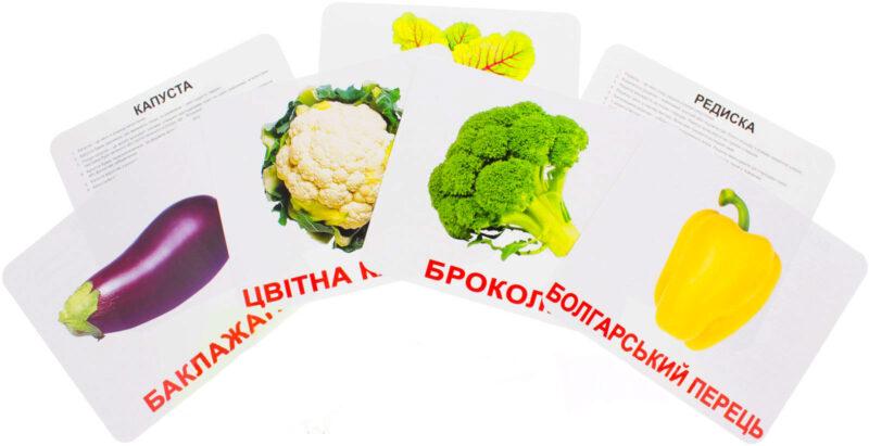 Купити Подарунковий набір карток Домана «Овочі» великі з фактами, ламінірованние.Раннее розвиток за методикою Глена Домана
