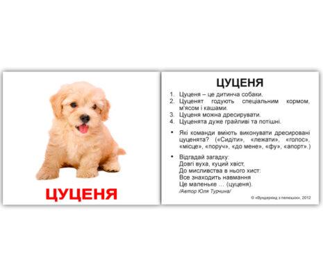 """Міні-картки Домана """"Свійські тварини"""" з фактами українською"""